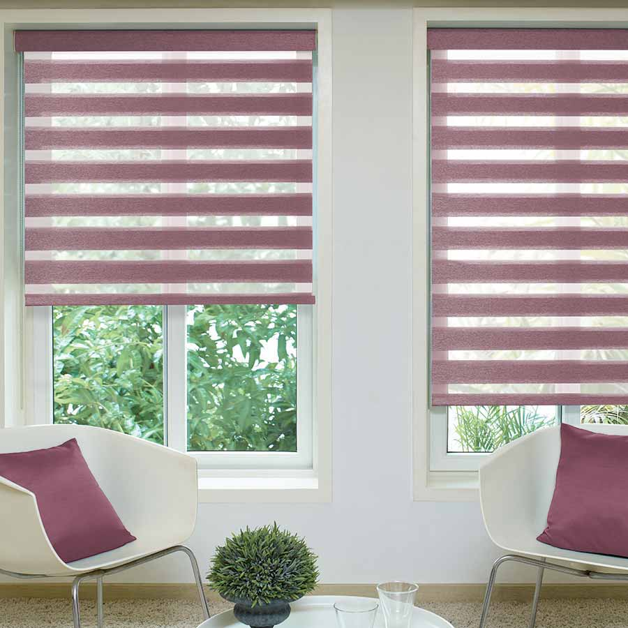 Reagan-Berry-Duplex-Blinds