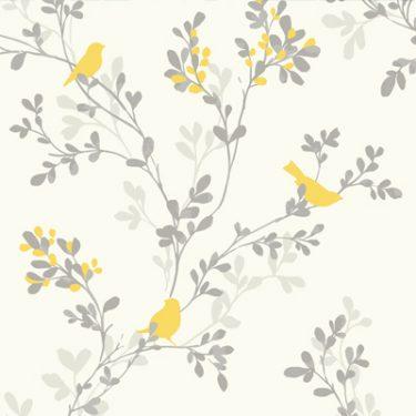 Sparrow-Summer